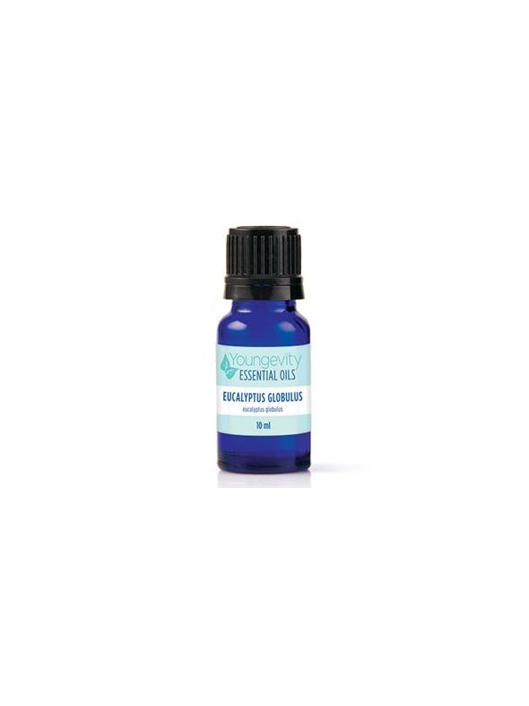 Eucalyptus Globulus Essential Oil - 10ml