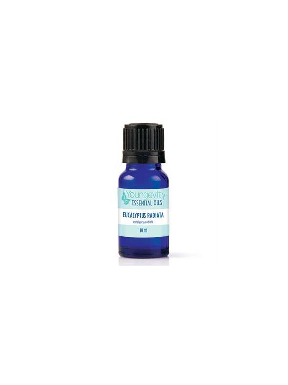 Eucalyptus Radiata Essential Oil - 10ml